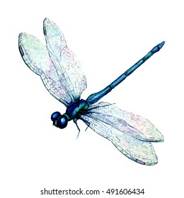 Hand drawn watercolor illustration of blue dragonfly isolated on white background. Beautiful insect watercolor drawing in trendy vintage style. Flying dragonfly with transparent wings.