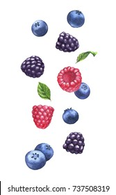 Hand drawn watercolor illustration of the different flying berries: Blueberry, blackberry, raspberry isolated on the white background