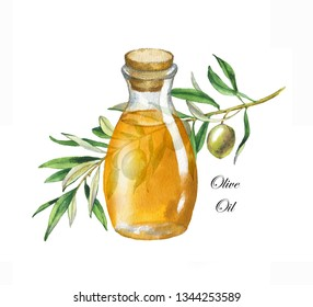 Hand drawn watercolor illustration with green olive branch and olive oil in the bottle
