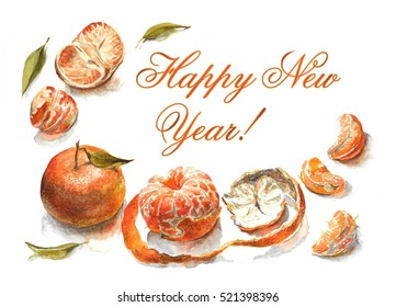 Hand drawn watercolor illustration of mandarines
