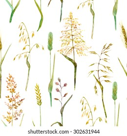 Hand drawn watercolor illustration. Meadow grass seamless pattern on white. Ecological nature background.