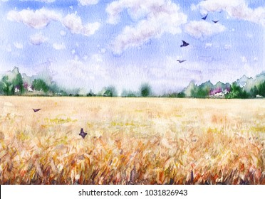 Hand drawn watercolor illustration. Nature landscape.  Summer rural scene with  wheat field, clouds, trees and flying birds.