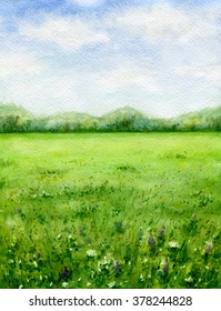 Hand drawn watercolor illustration. Nature landscape.  Summer view of the green meadow with wildflowers.