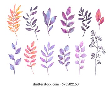 Hand drawn watercolor illustrations. Autumn Botanical clipart. Set of purple leaves, herbs and branches. Floral Design elements. Perfect for wedding invitations, greeting cards, posters, prints
