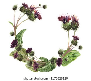 Hand drawn watercolor isolated wreath of a colorful gentle meadow thistle. Botanical vintage watercolor illustration. Design for cards, fabric, textile, cover, wallpaper