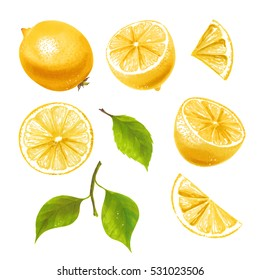 Hand drawn watercolor marker illustrations of yellow lemon fruits set.