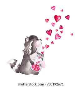 Hand drawn watercolor raccoon holding glass jar with hearts