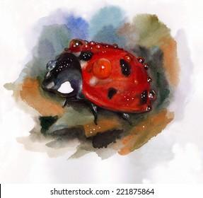 Hand drawn watercolor  raster illustration with ladybug on the orange leaf.