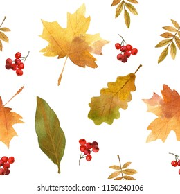 Hand drawn watercolor, Seamless autumn leaves pattern ,beautiful autumnal background,