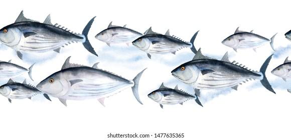 hand drawn watercolor seamless border of blue tuna skipjack fish for commercial fishing saltwater mackerel family known as balaya, aku, arctic bonito for food design labels packaging restaurant menu