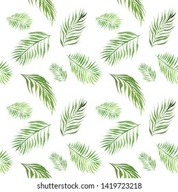 hand drawn watercolor seamless pattern with green palm tree leaves on white  background