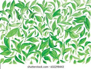 Hand drawn watercolor tea leaves pattern