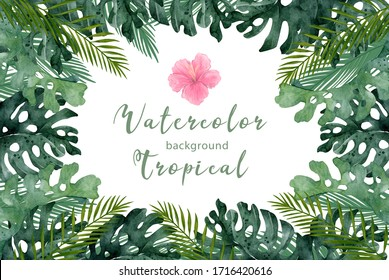 Hand drawn watercolor tropical banner with jungle leaves. Exotic leaves illustrations horizontal frame, jungle tree, brazil trendy. Perfect for design.