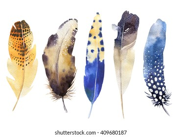 Hand drawn watercolor vibrant feather set.  Boho style. illustration isolated on white. Bird fly design for T-shirt, invitation, wedding card.Rustic feathers Bright colors.