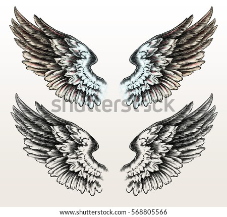 Hand Drawn Wings Tattoo Style Stock Illustration 568805566