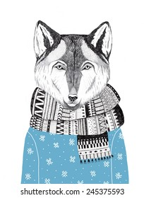 hand drawn wolf portrait in a scarf and a sweater, winter look