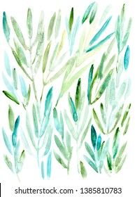 hand made watercolor eucalyprus leaves background / painted nature