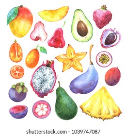 Hand painted exotic fruits set. Watercolor collection of mango, pineapple, carambola, avocado, pitaya, lychee, passiflora edulis, kumquat, mangosteen, akebia quinata  isolated on white background.