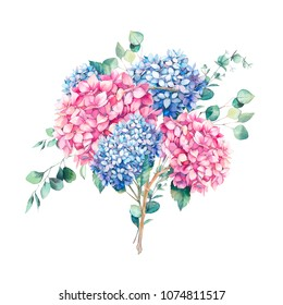 Hand painted floral bouquet. Watercolor botanical illustration of hydrangea flowers  and eucalyptus branches. Natural composition isolated on white background