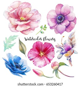 Hand painted floral elements set. Watercolor botanical illustration of buttonhole, tulip, peony, anemone flowers and leaves. Natural objects isolated on white background