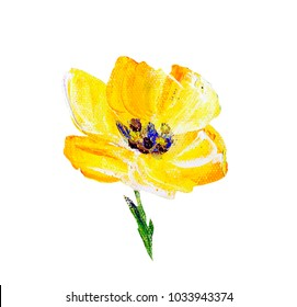 Hand painted modern style yellow flower isolated on white background. Spring flower seasonal nature card. Oil painting
