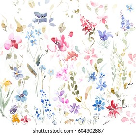 Hand painted multicolor watercolor flowers and plants on a white background