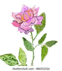 Hand painted picture, watercolours - rose pink colour.
