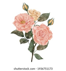 hand painted rose bouquet element illustration in pastel color