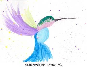 Hand painted simple watercolor illustration of a colorful hummingbird on a white background with copy space, for your designs and artwork