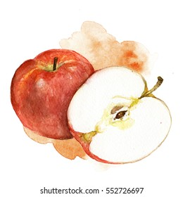 Hand painted watercolor apple illustration on white background
