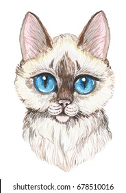 Hand painted watercolor cute siam cat