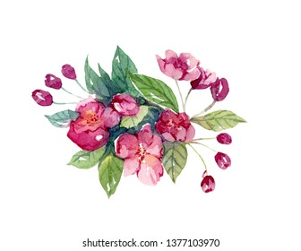 Hand painted watercolor floar artwork cherry blossoms isolated on white illustration.