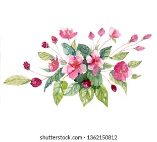 Hand painted watercolor floral cherry bloossom floral illustration clipart