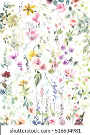 Hand painted watercolor flowers and plants on white background
