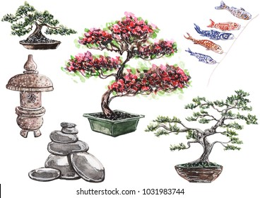 Hand painted watercolor illustration of Japanese set of bonsai and garden.