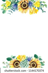Hand painted watercolor sunflowers, freesias, thistle and eucalyptus floral illustration on white background. Invitation. Concept for postcard, card, invitation, wedding stationery design