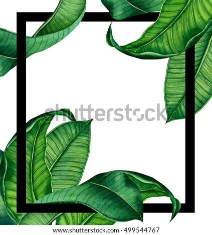 Hand Painted Watercolot Botanical Tropical Leaves Stock Illustration ...