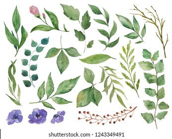 Hand painting big watercolor floral collection with branches, twigs, leaves and flowers isolated on a white background. Floral elements for invitations, greeting cards or another floral designs.