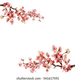 hand painting spring flowers branch watercolor isolated on white background for greeting cards