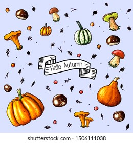 Hand sketched background with pumpkins, autumn fruites, mushrooms and berries