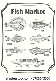 Hand sketched different fish poster template. Fish Market banner