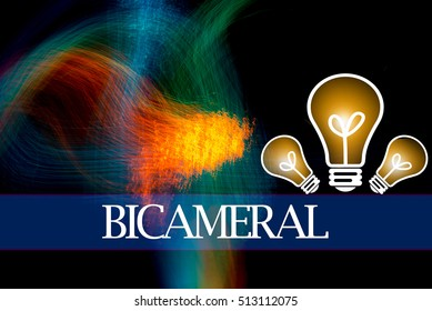 Hand writing BICAMERAL  with the abstract background. The word BICAMERAL represent the meaning of word as concept in stock photo.