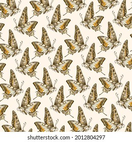 Hand-drawn background pattern with butterfly. Cream background color. Colorful pattern with detailed illustration of butterfly.