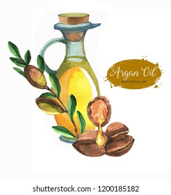 Hand-drawn botanical illustration of the argan oil. Cosmetics and medical plant. Argan fruits and oil bottle isolated on the white background.