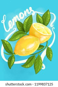 hand-drawn digital illustration with two juicy lemons on a branch