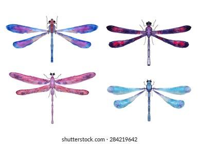 hand-drawn dragon-flies, watercolor
