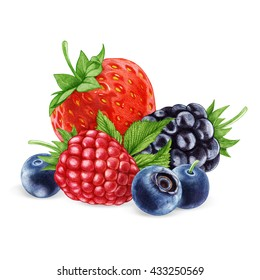 Hand-drawn illustration of  Berries. Digitally colored.