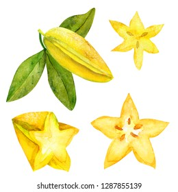 Hand-drawn ripe starfruit or carambola collection isolated on white background. Watercolor illustration. Template for card, banner, fabric, and scrapbooking