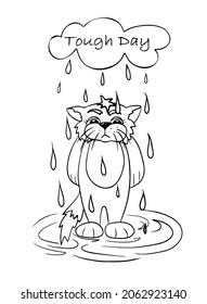 雨の中に立っている手描きの悲猫、びしょぬれの猫、強いデイカード、おかしな猫カード