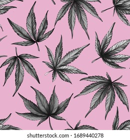 hand-drawn Seamless cannabis pattern on a pink background. Black and white hemp leaves on a pink background.